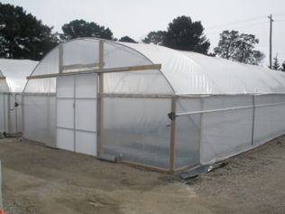 Ventilated Greenhouses